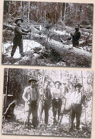 Lumberjacks with 2-man saw, around 1880.